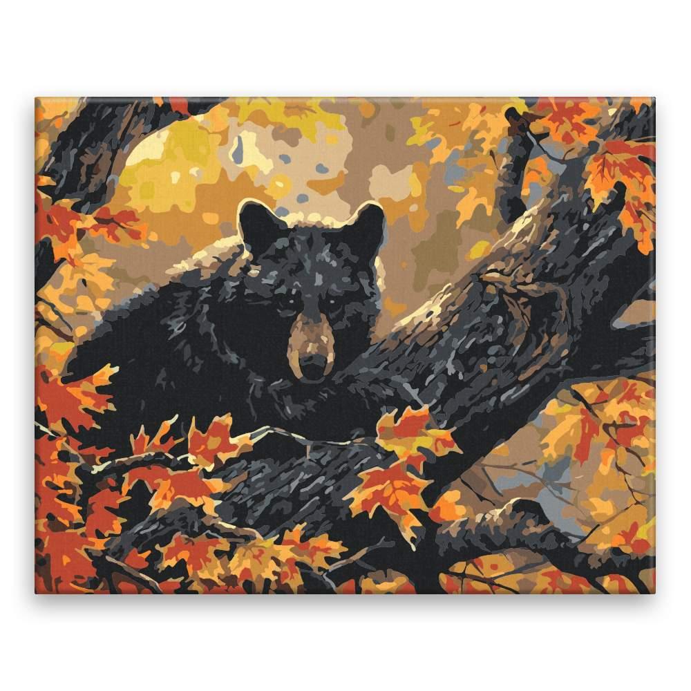 Malování podle čísel Medvěd na stromě