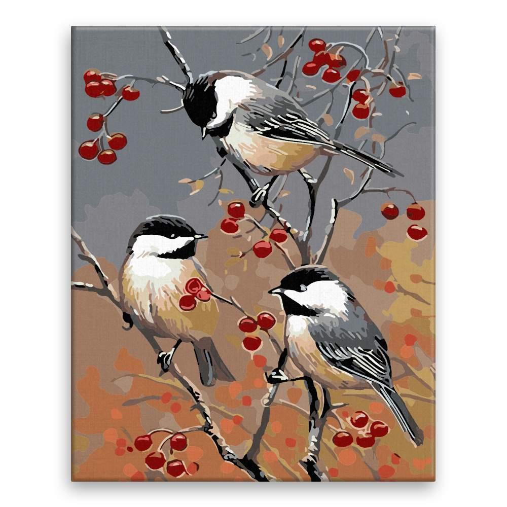 Malování podle čísel Tři ptáčci
