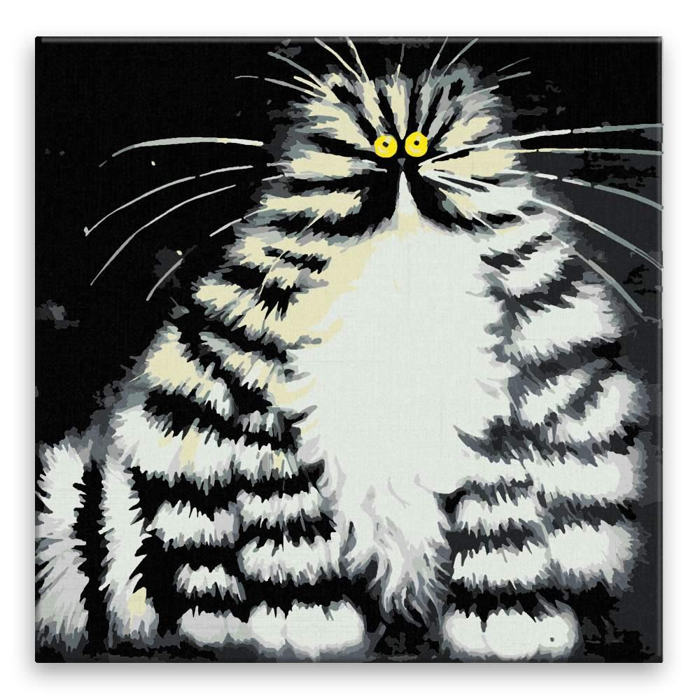 Malování podle čísel Pohádková kočka