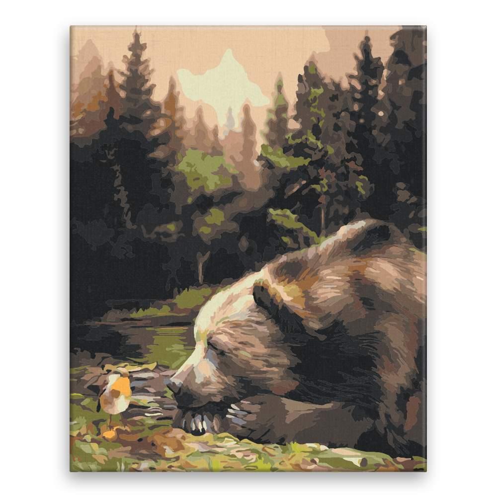 Malování podle čísel Medvěd a ptáček