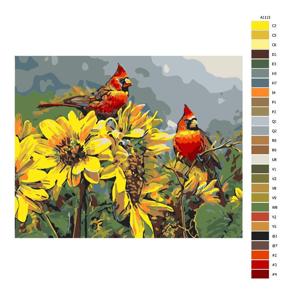 Návod pro malování podle čísel Ptáci ve slunečnicích