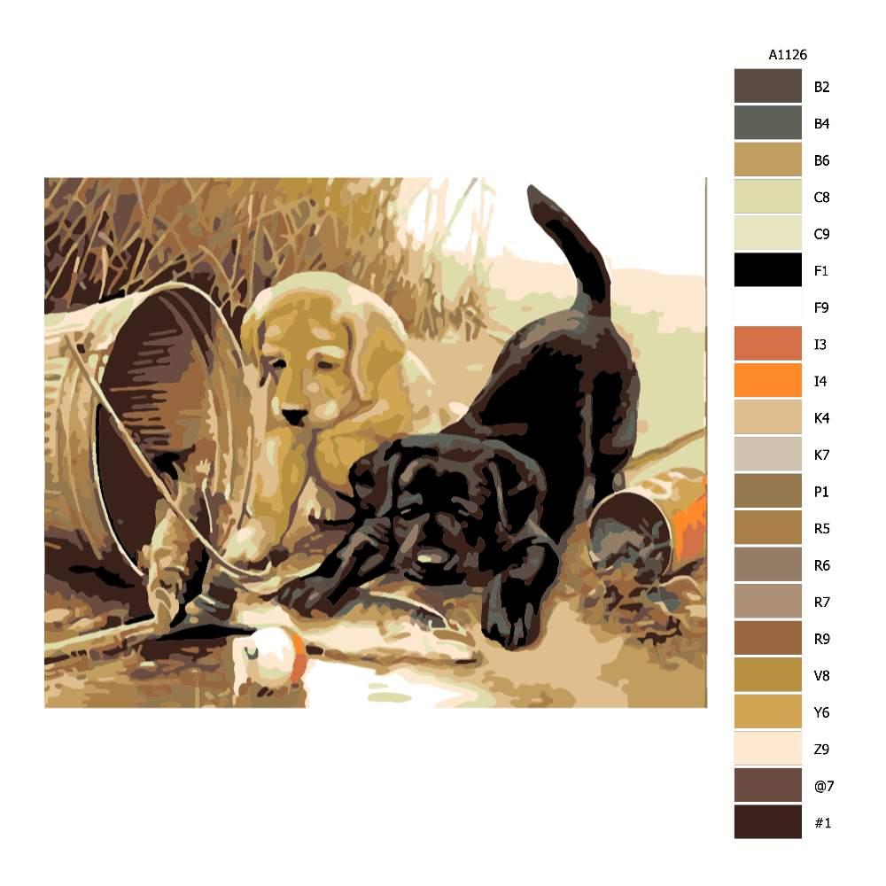 Návod pro malování podle čísel Černé a zlaté štěně