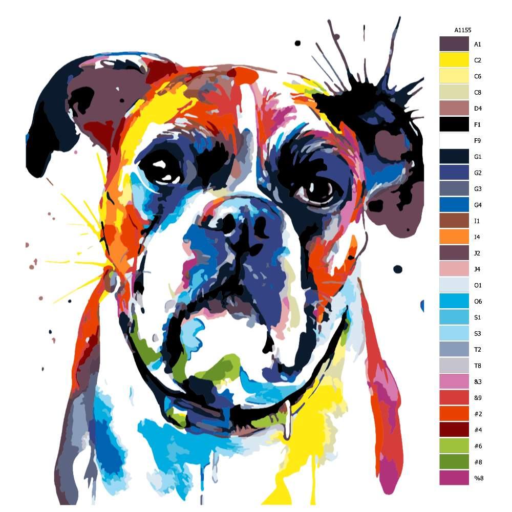 Návod pro malování podle čísel Boxer v barvách
