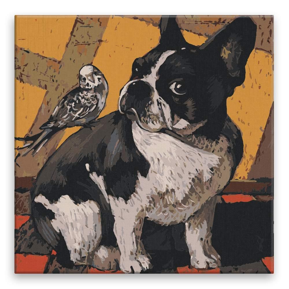 Malování podle čísel Buldoček s ptáčkem