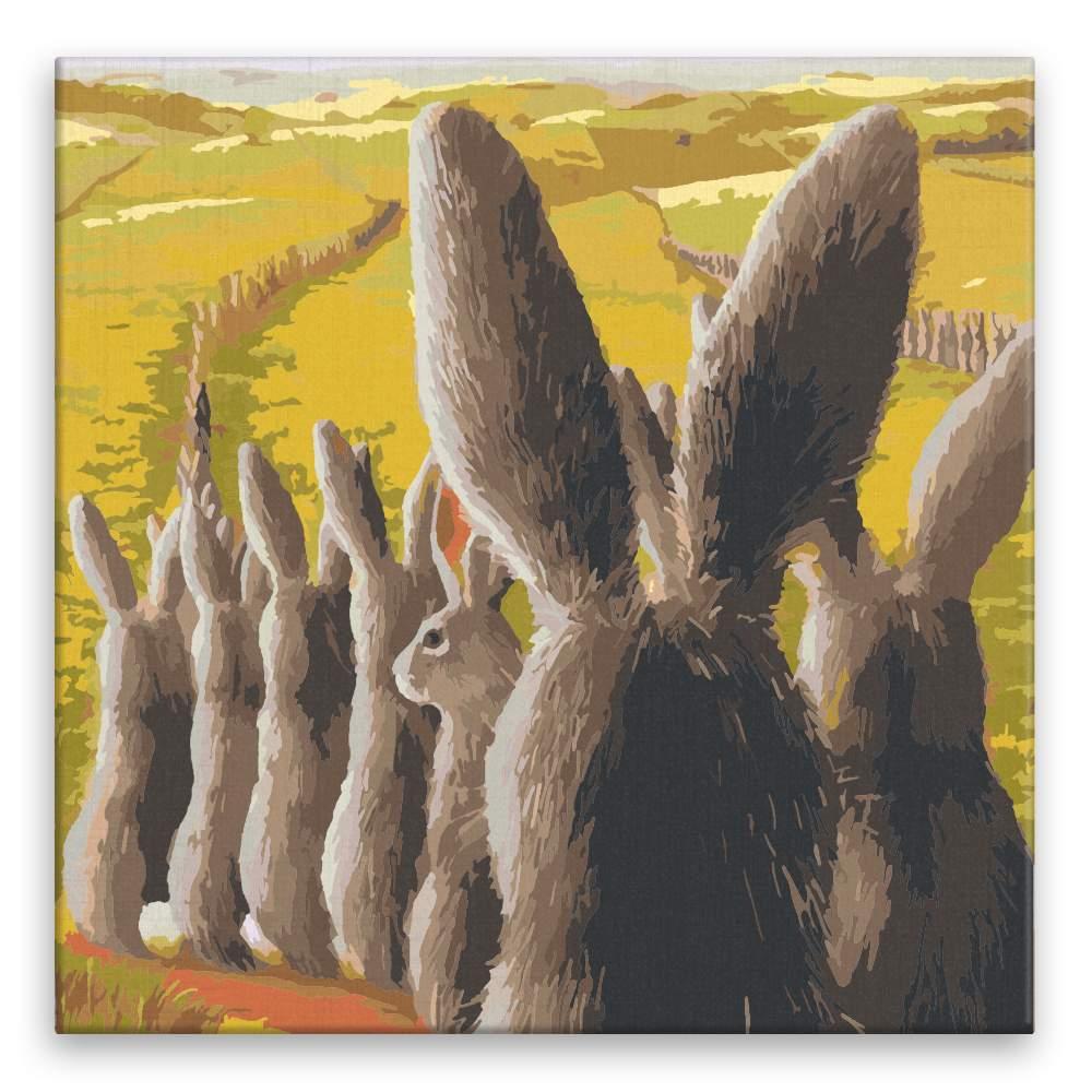 Malování podle čísel Zajíci v zástupu