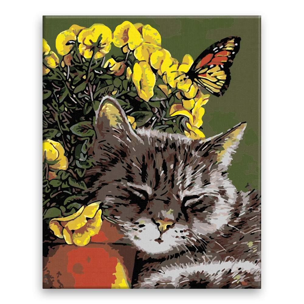 Malování podle čísel Spící kočička v kvítí