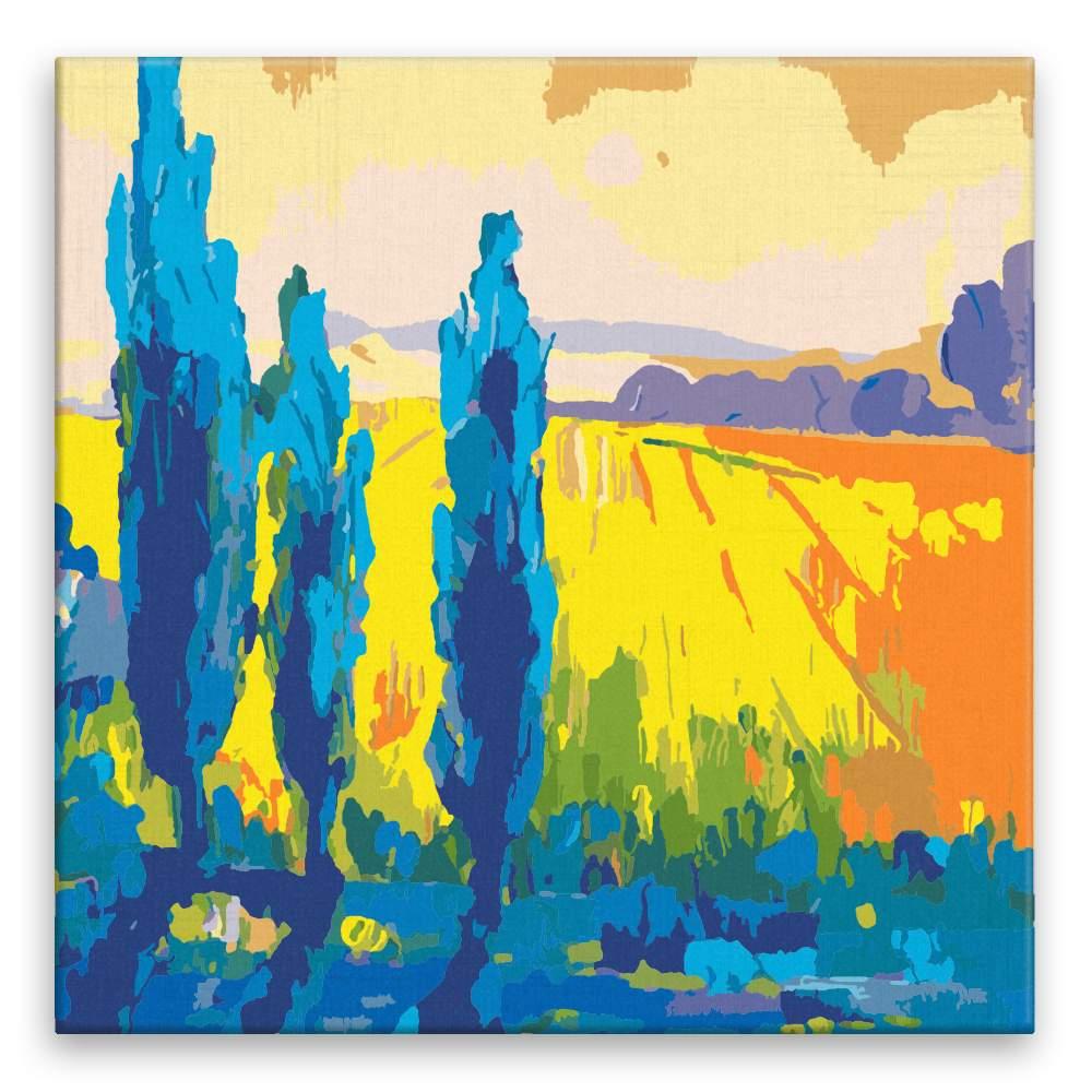 Malování podle čísel Polní krása