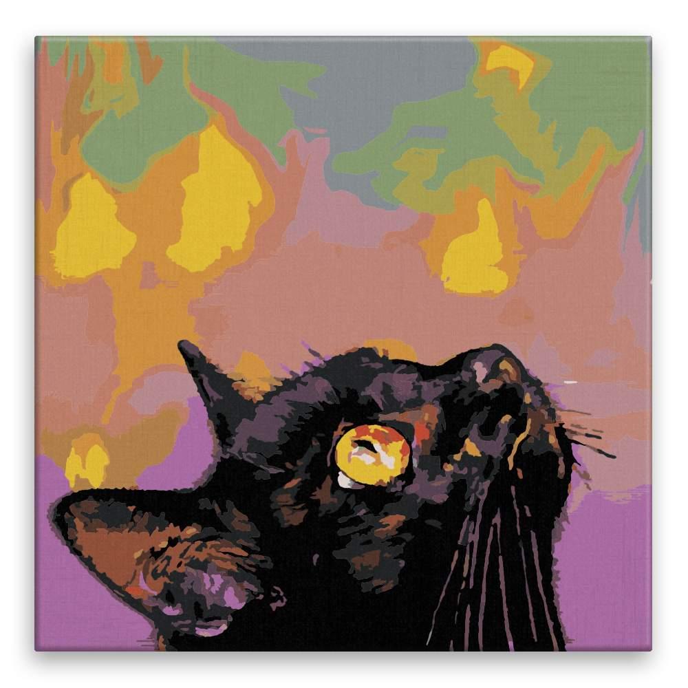 Malování podle čísel Kočičí pohled vzhůru