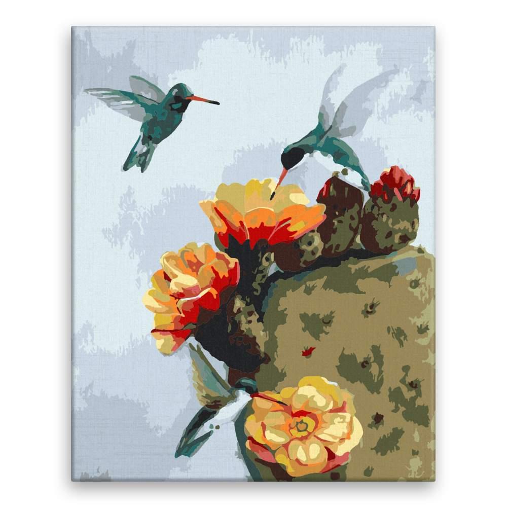 Malování podle čísel Kolibříci a kaktus