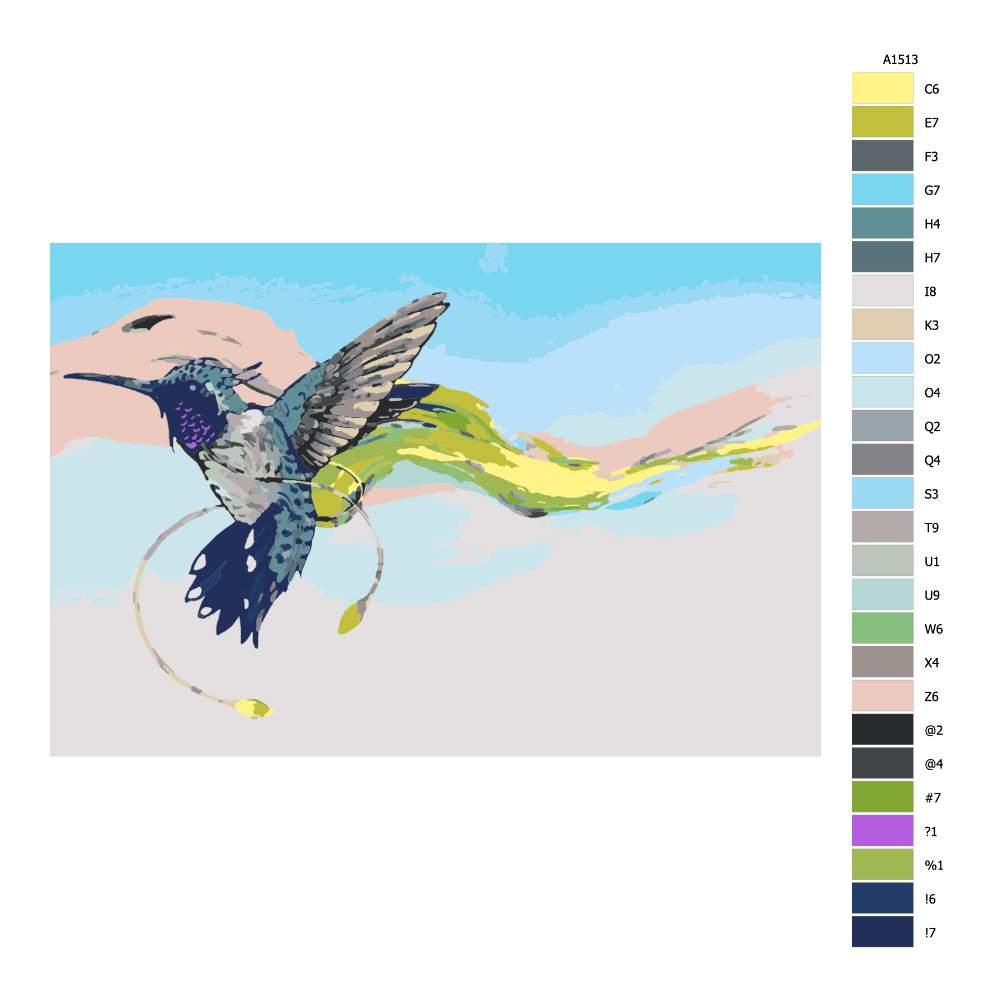 Návod pro malování podle čísel Kolibřík se závojem