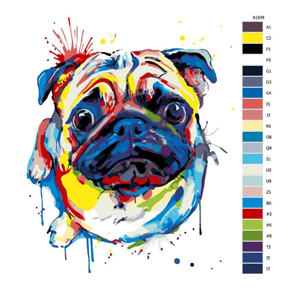 Návod pro malování podle čísel Vzhlížející mops v barvách