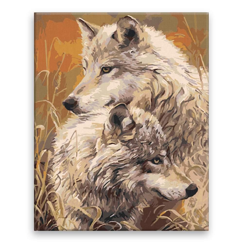 Malování podle čísel Vlci