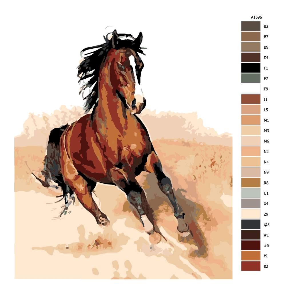 Malování podle čísel Kůň v klusu