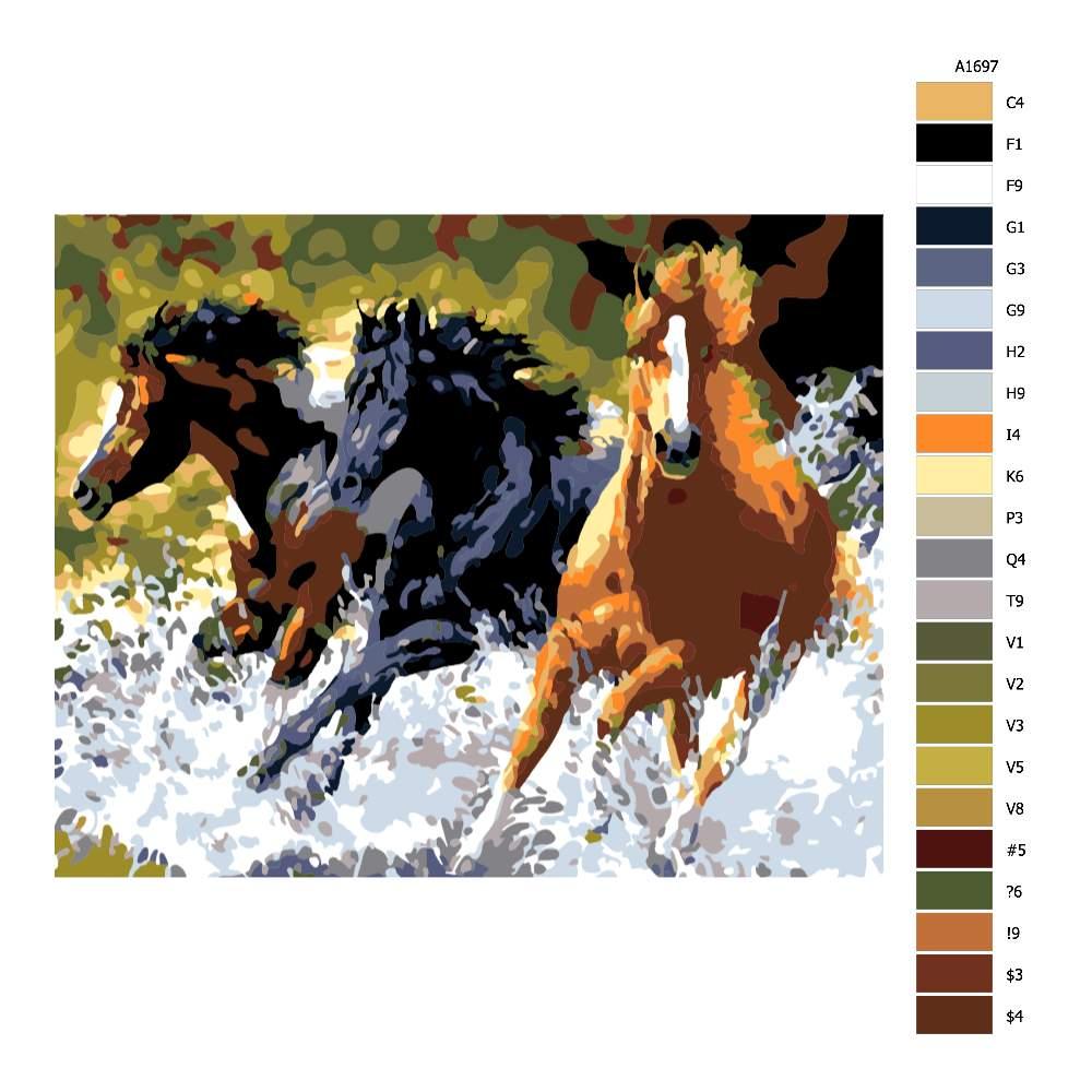 Návod pro malování podle čísel Koně probíhající vodou