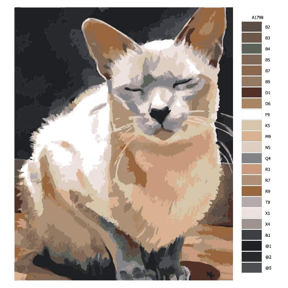 Návod pro malování podle čísel Spící kočka