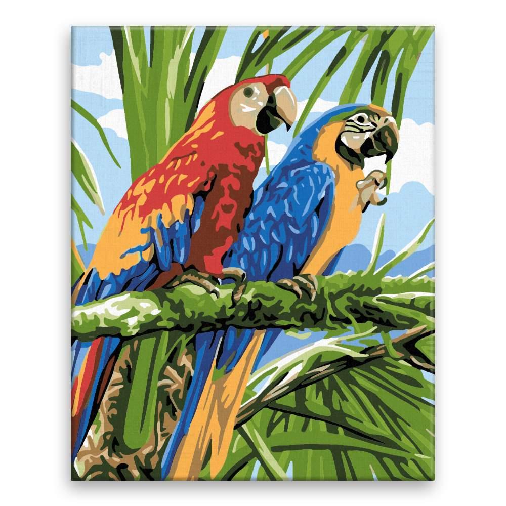 Malování podle čísel Dva papoušci
