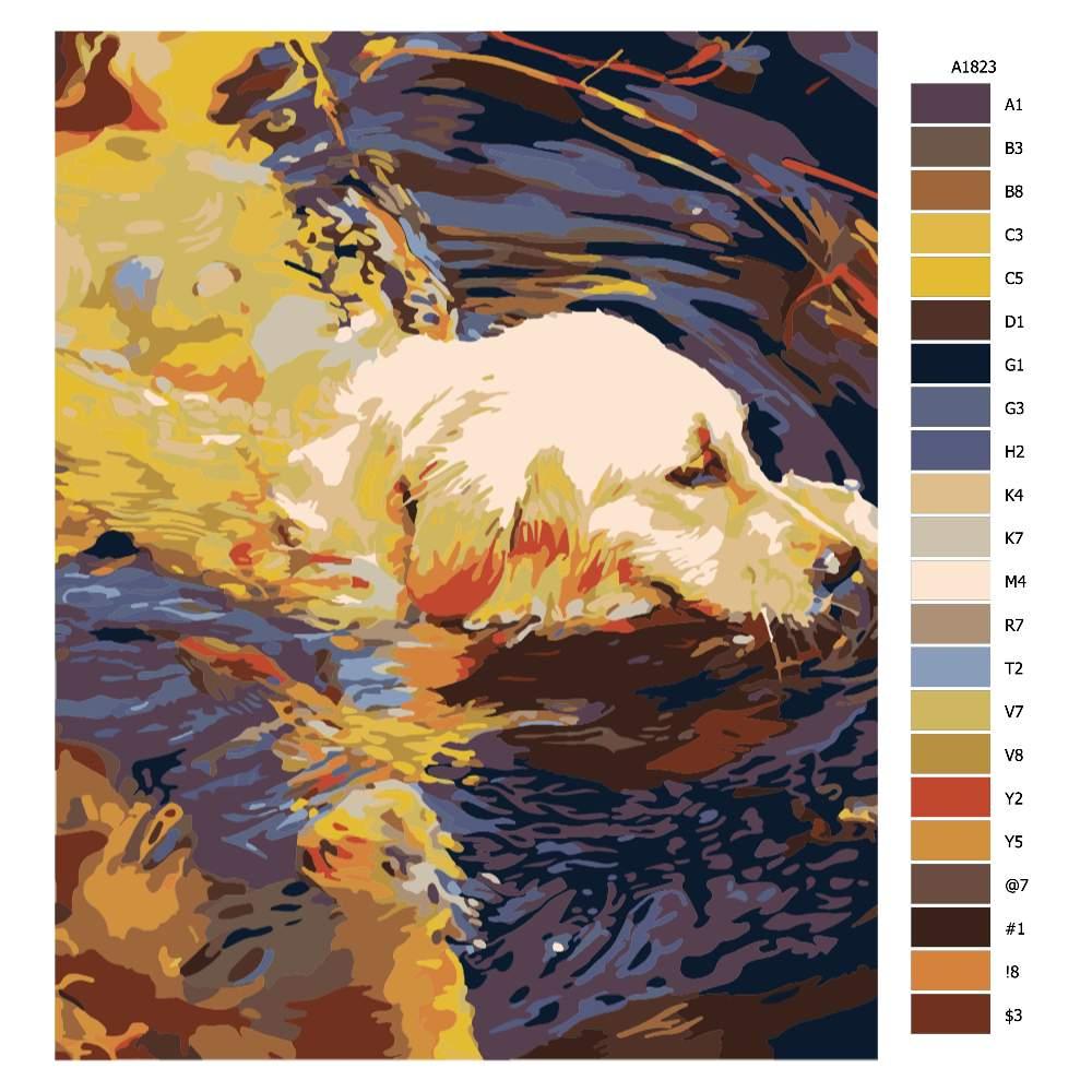 Návod pro malování podle čísel Hravý pes ve vodě