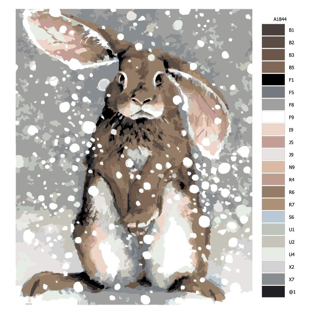 Návod pro malování podle čísel Ušatý králík ve sněhu