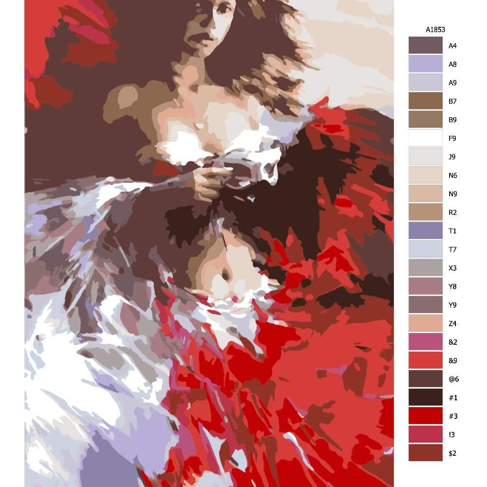 Návod pro malování podle čísel Červeno bílá