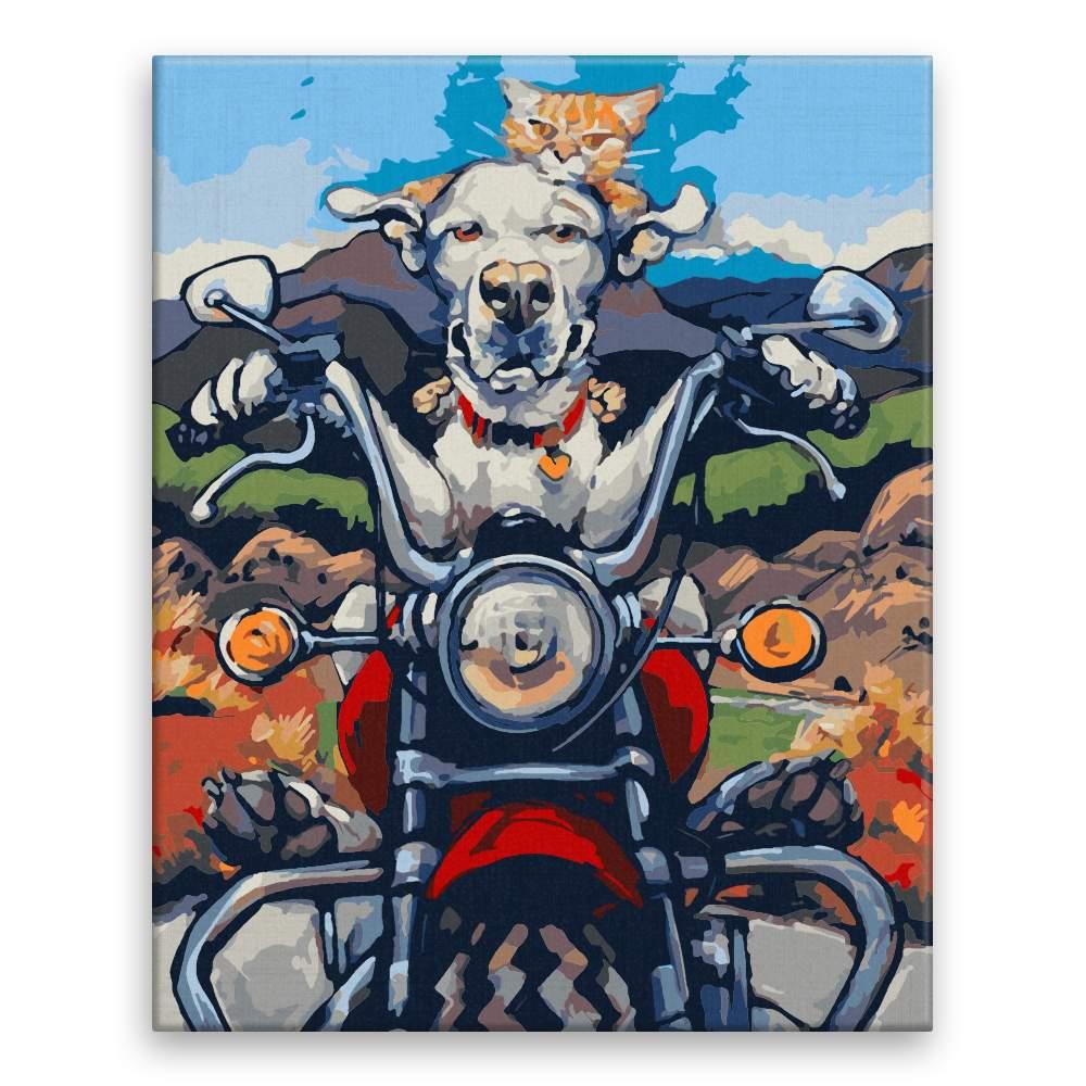 Malování podle čísel Pes s kočkou na motorce