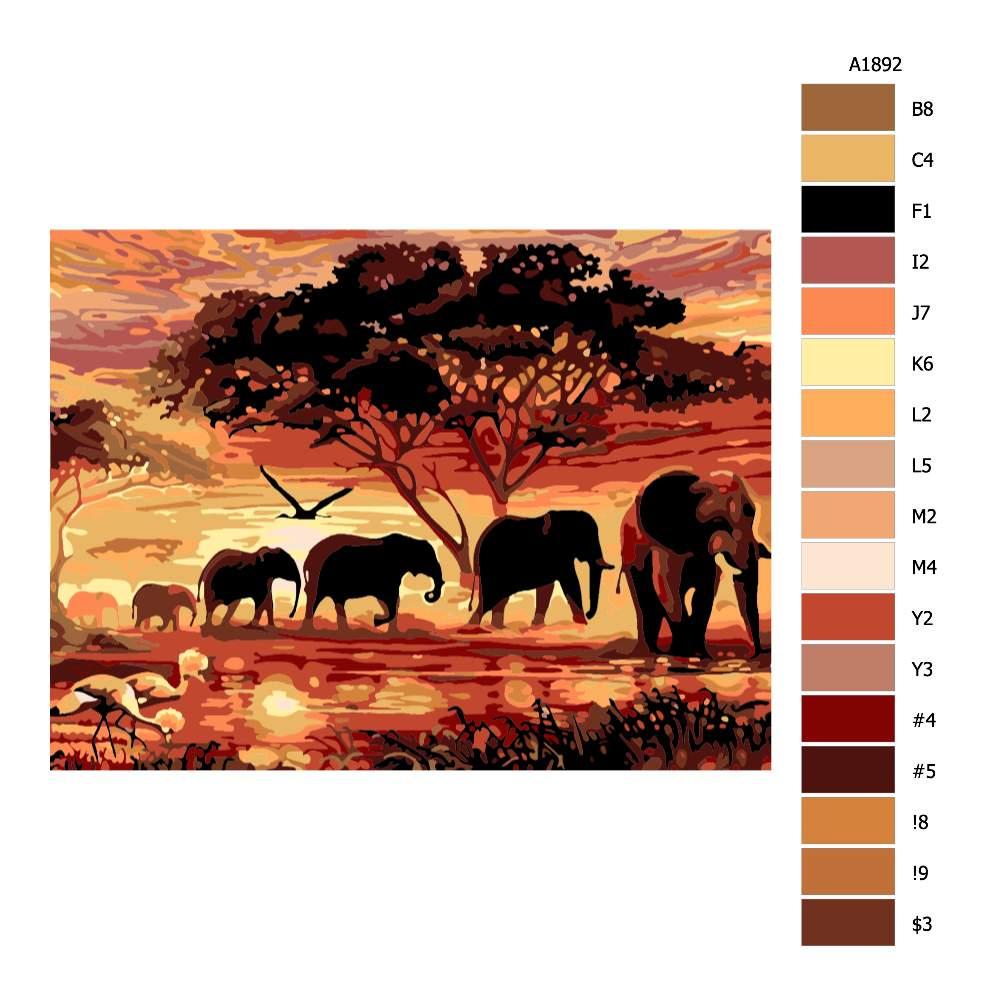 Návod pro malování podle čísel Sloni a západ slunce