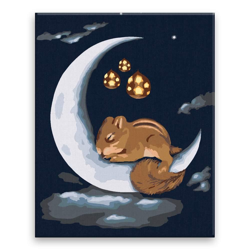 Malování podle čísel Noční veveruška na měsíčku