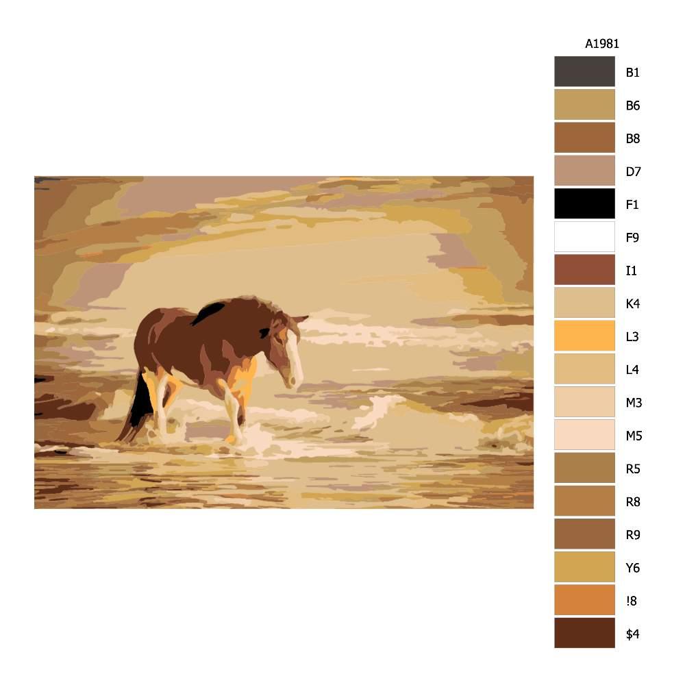 Malování podle čísel Hřebec na pláži