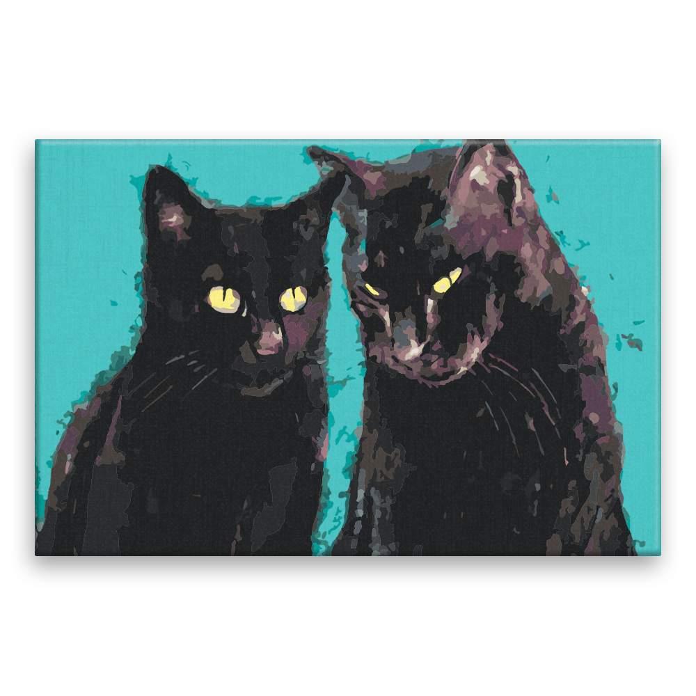 Malování podle čísel Dva černí kocouři