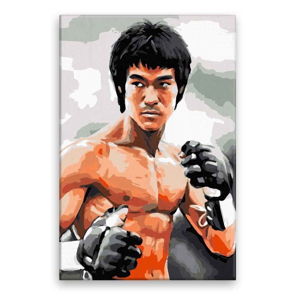 Malování podle čísel Bruce Lee 02