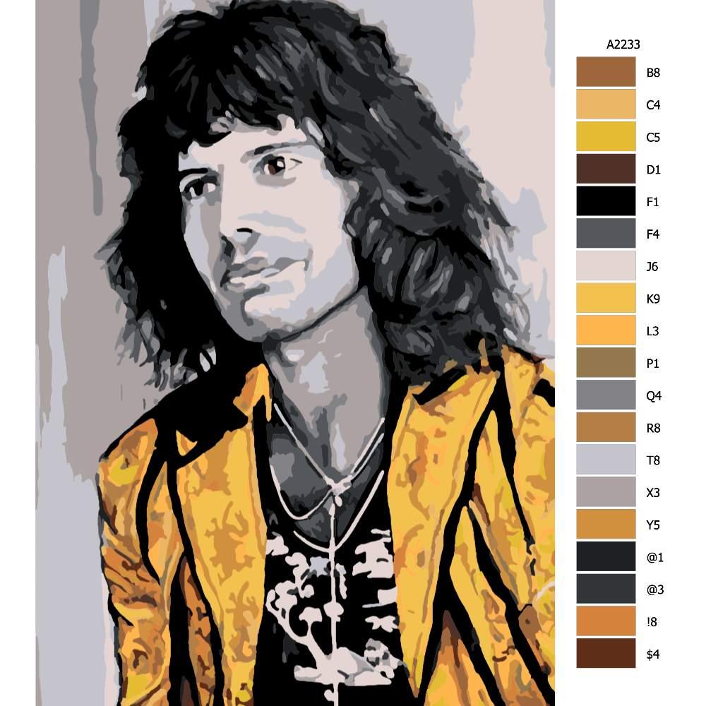 Návod pro malování podle čísel Freddie Mercury 04