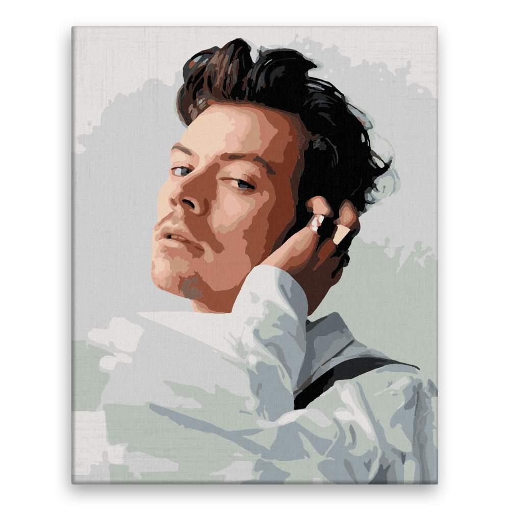 Malování podle čísel Harry Styles 02