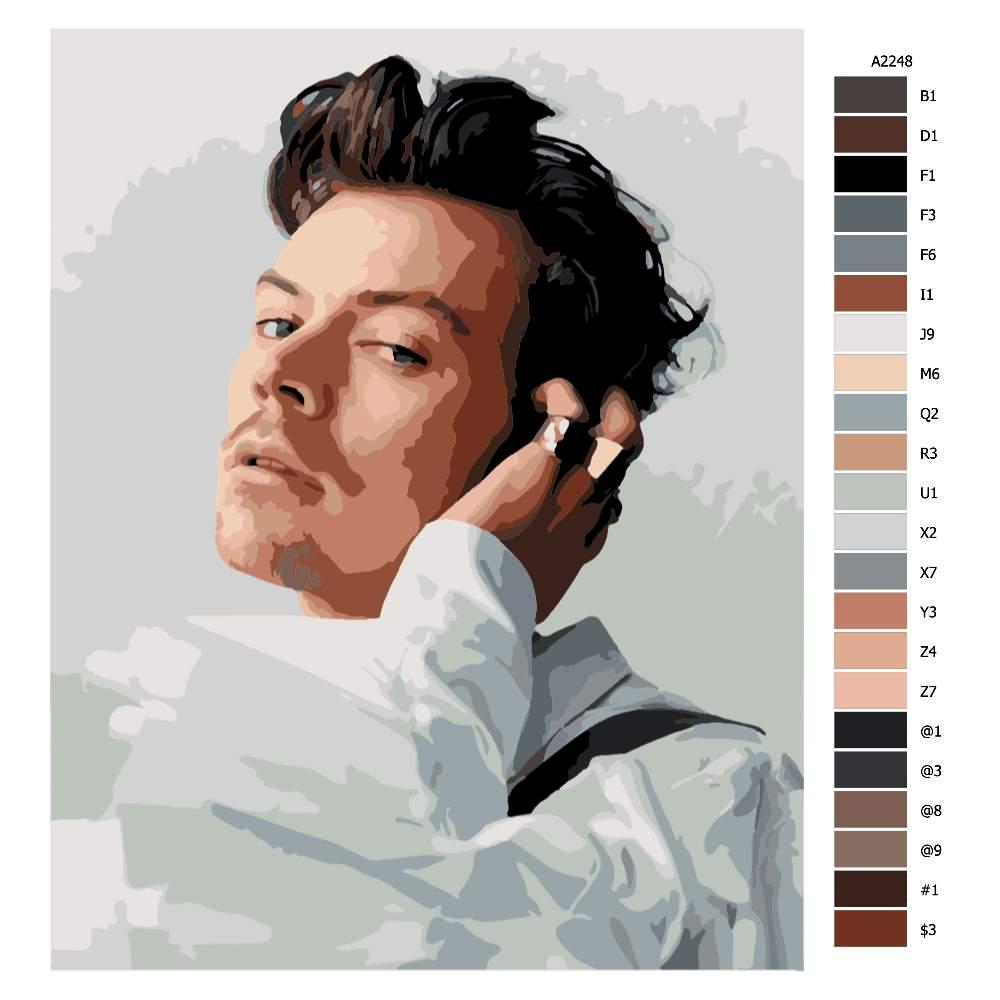 Návod pro malování podle čísel Harry Styles 02