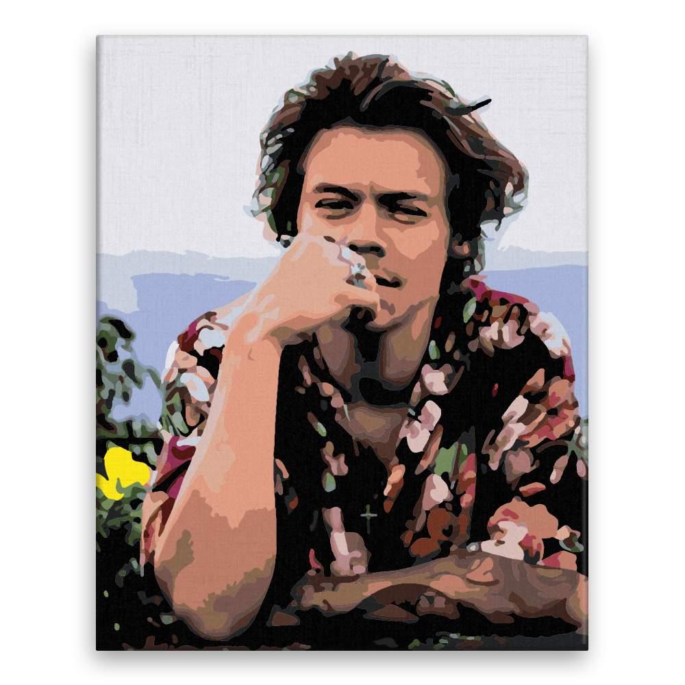 Malování podle čísel Harry Styles 04